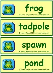 Frog Vocabulary