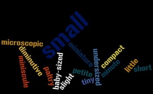 """""""Small"""" Wordle"""