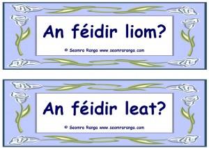 An Féidir Leat?