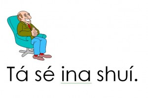 Tá Sé Ina Shuí