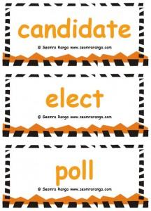 Election Vocabulary