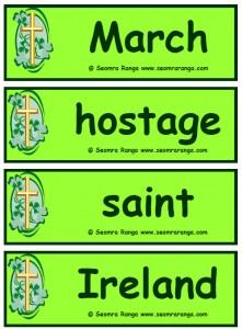 St. Patrick Flashcards