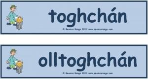 Luaschártaí Toghcháin