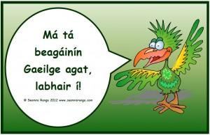 Beagáinín Gaeilge