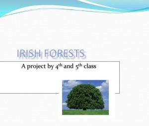Irish Forests