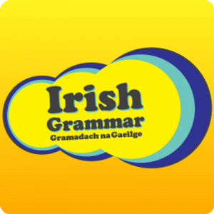 Irish Grammar App