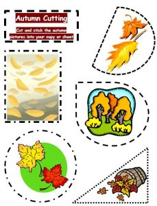 autumn_oral_cutting_02