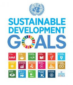 UNICEF Sustainable Development Goals Resources