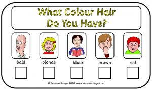 What Colour Hair?