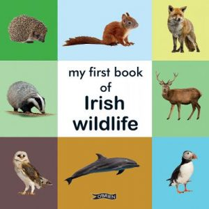 Book Review: My First Book of Irish Wildlife