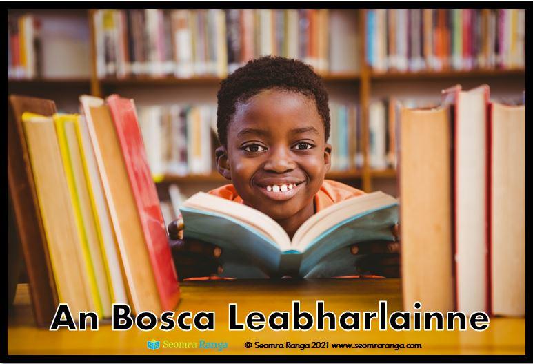 An Bosca Leabharlainne